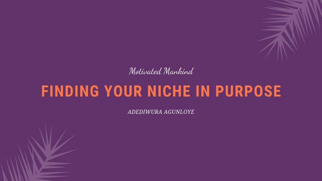 Book Cover: Finding your niche in purpose