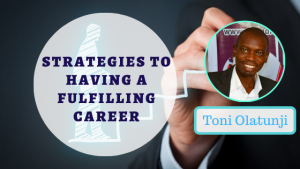 Book Cover: Strategies To Have A Fulfilling Career