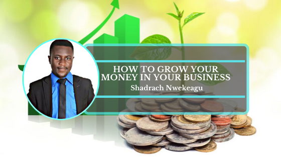 Book Cover: How to grow your money in your business