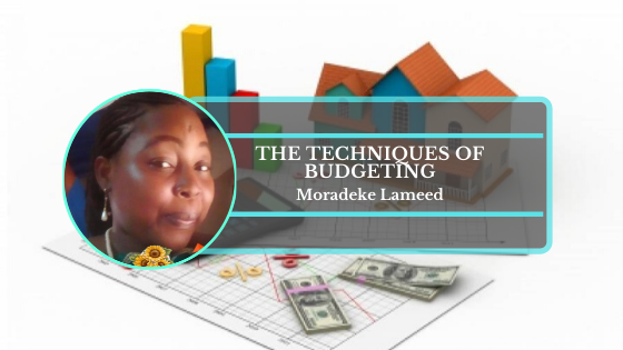 Book Cover: Techniques Of Capital Budgeting