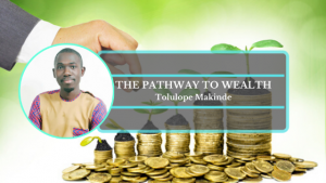 Book Cover: The pathway to wealth